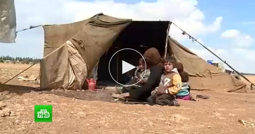 чеченцы отрезают голову женщине видео